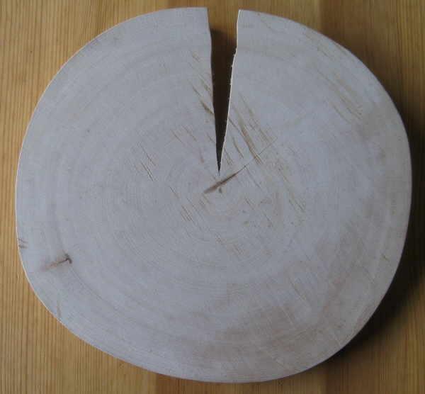 Holz Trocknen Ohne Risse re buchenscheiben rissfrei trocknen